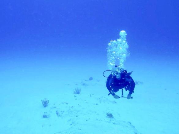 Un plongeur seul au milieu de l'océan