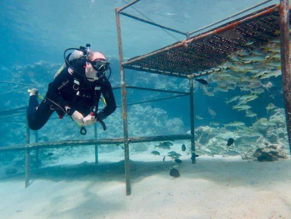 L'échec en plongée n'est pas une fatalité pour ce plongeur réalisant un exercice en mer