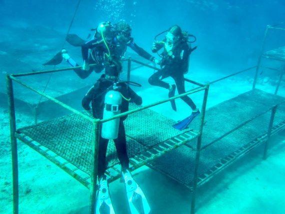 trois plongeurs vérifient leur aisance au travers d'exercices simples au début d'une plongée de réadaptation