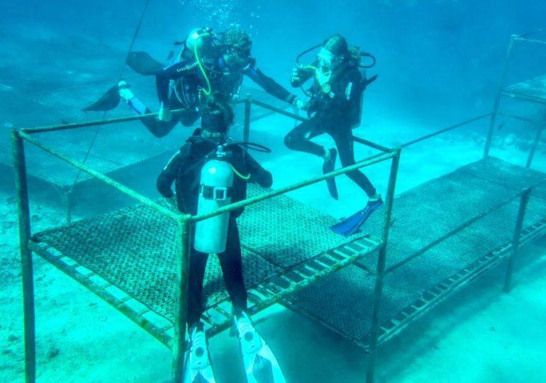 Vacances de plongée: 3 bonnes raisons de faire une plongée de réadaptation