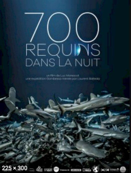 Un des films de plongée que je préfère : 700 requins dans la nuit.