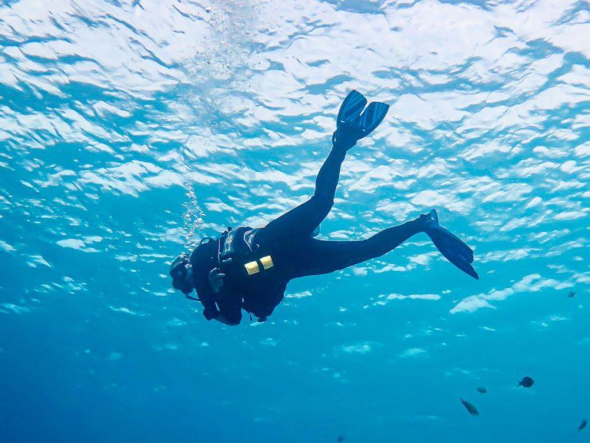 Les 10 pires profils de plongeurs