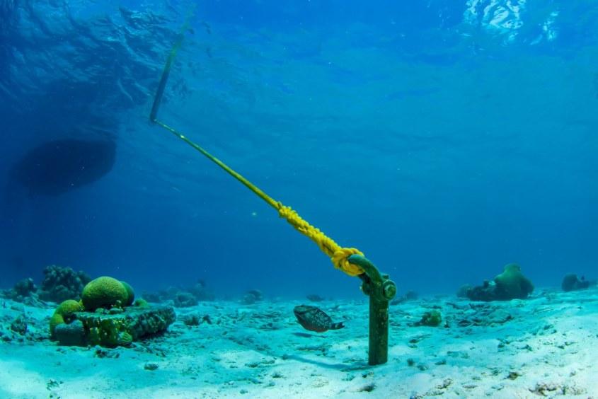 Un bateau accroché à la bouée des 1000 marches vu sous l'eau à Bonaire.