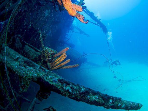 Un plongeur explore une épave dans les eaux de Bonaire