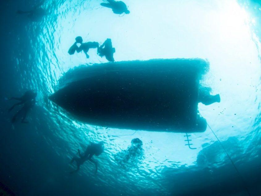 COVID19 : tout ce qui a changé dans notre manière de plonger (ou pas)