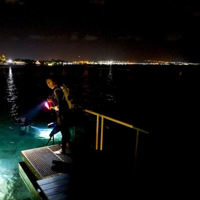 Les plongées de nuit comme celle que s'apprête à faire Hélène Adam à Bonaire permettant de voir que les fonds marins ne se déclinent pas toujours sous des nuances de bleu.