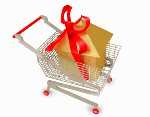 Special Needs Grocery Shopping & Delivery Service