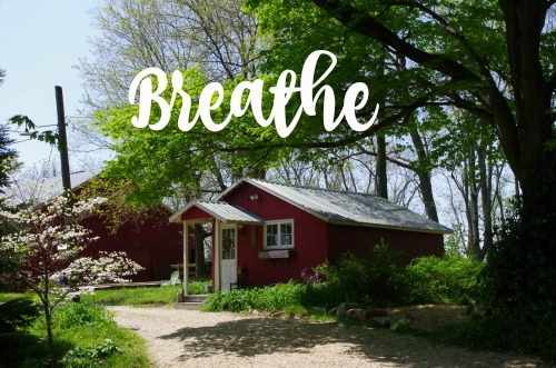 How to Breathe When You Can't Let Go