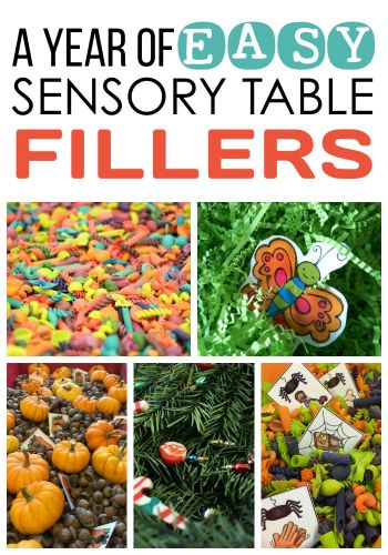 Marsha McGuire: A Year of Easy Sensory Table Fillers