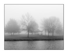 fog-trees-east-lake-black-white-TJB2129