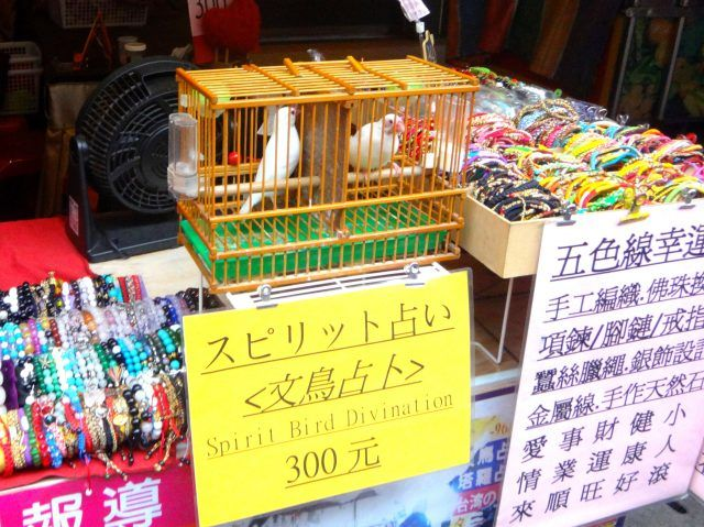 One of the unique things to do in Taipei is have your fortune told by a bird. Two birds are in a cage with a sign saying Spirit Bird Divination