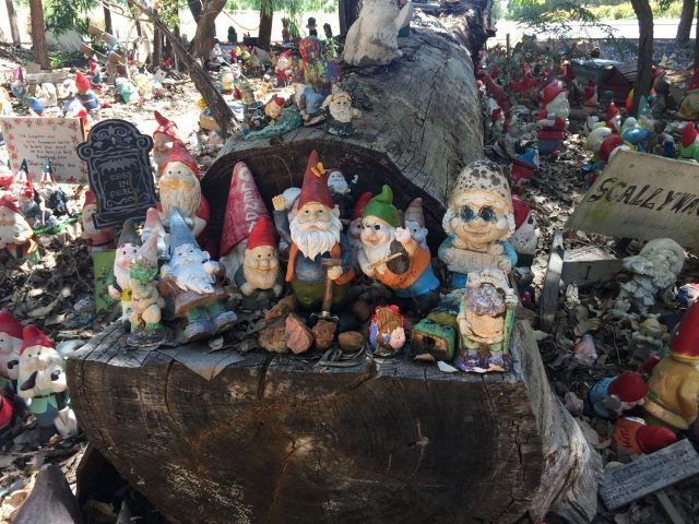 Gnomesville is a two hour drive from Perth but still gets a mention on my things to do in Perth list because it's so cute. Thousands of gnomes have made this small patch of land their home!