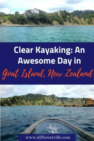Goat Island near Auckland, New Zealand is a gorgeous marine reserve - and we think we've found the best way to see it. A clear kayak which lets you see under the water.  Click for all the details. #clearyak #goatisland #daytripsfromauckland
