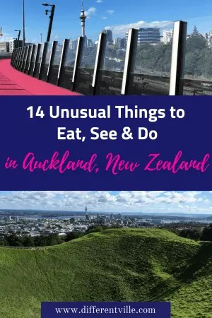 Planning a trip to New Zealand? We've got the best ideas of some more unusual things to do in Auckland. There's street art in Auckland, where to climb a volcano, and some amazing sights to see in Auckland. #auckland #newzealand #thingstodoinnewzealand