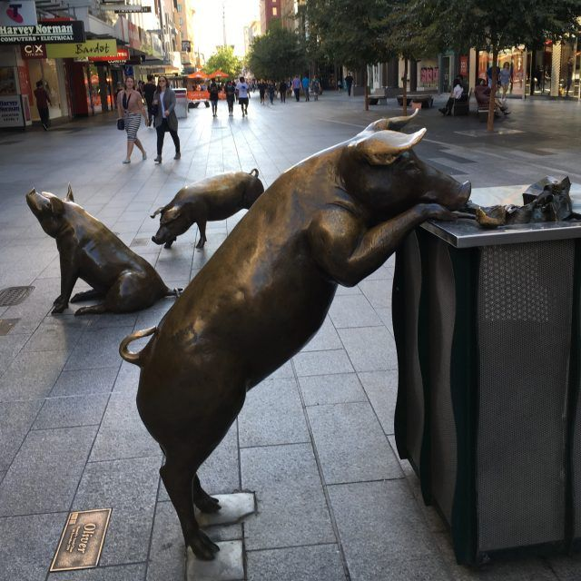 Checking out the Rundle Mall pigs is one of the unusual things to do in Adelaide.