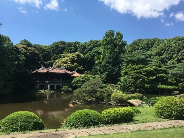 If you're looking for things to do in Tokyo before 10am, maybe visit one of the cities beautiful gardens like Shinjuku Gyoem.