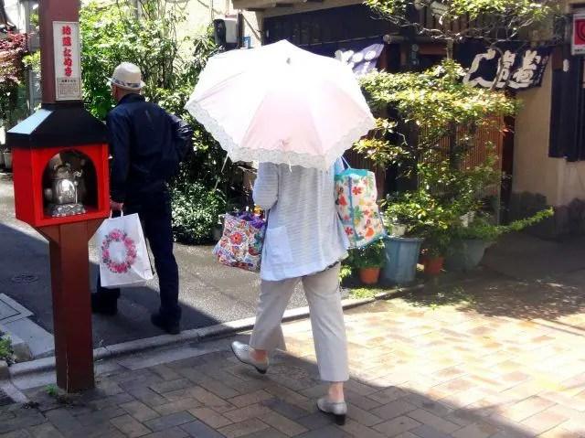 Tanuki Dori in Asakusa contains 12 tanuki statues each offering good luck of an area of life