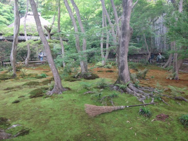 Giouji, yrmplr in Kyoto is covered in moss. It's definitely one of the more unusual temples in Kyoto.