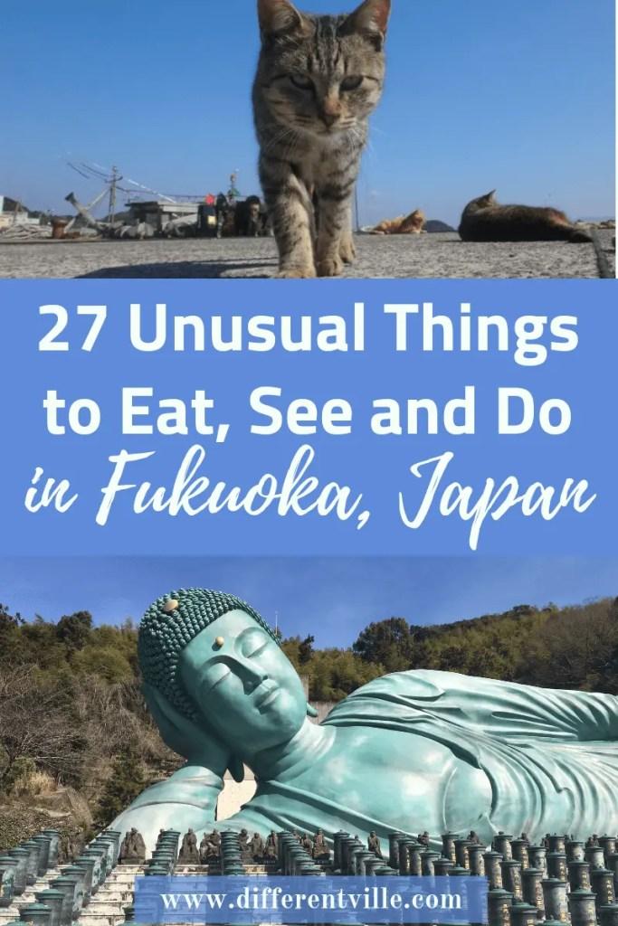 cat on cat island and bronze buddha in Fukuoka