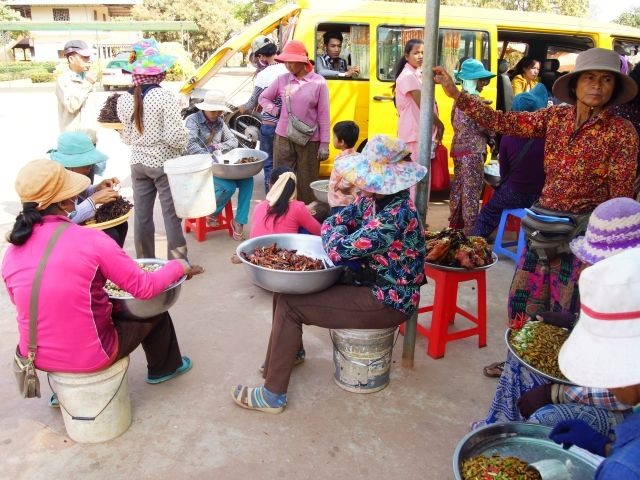 Market scene in Skoun, Cambodia of women selling fried spiders, crickets and other unusual foods.