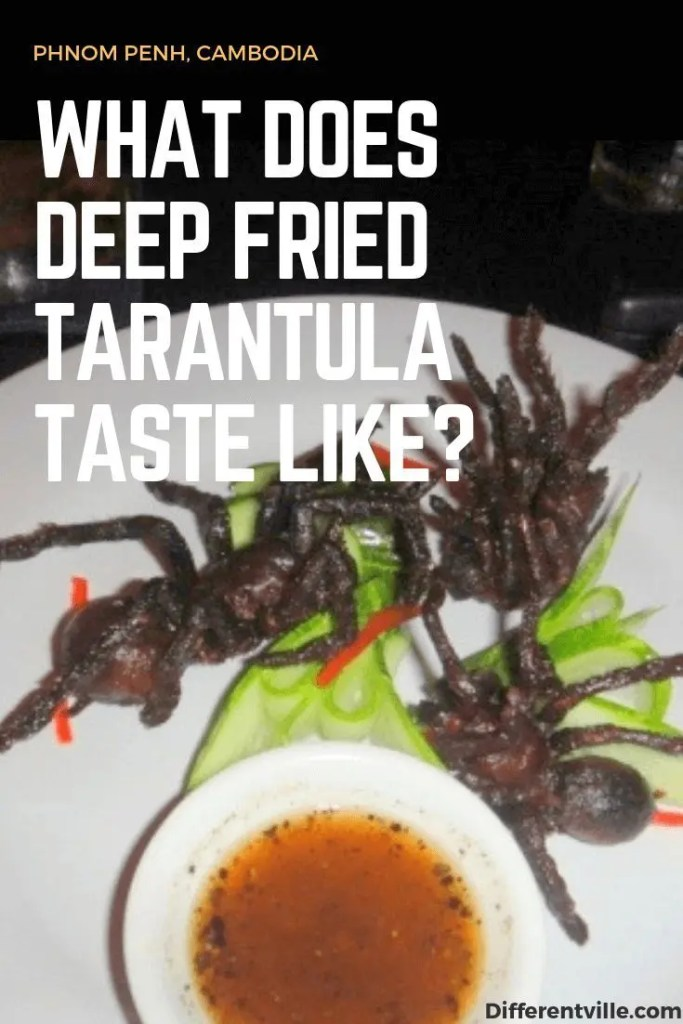 Three deep fried spiders on a white plate