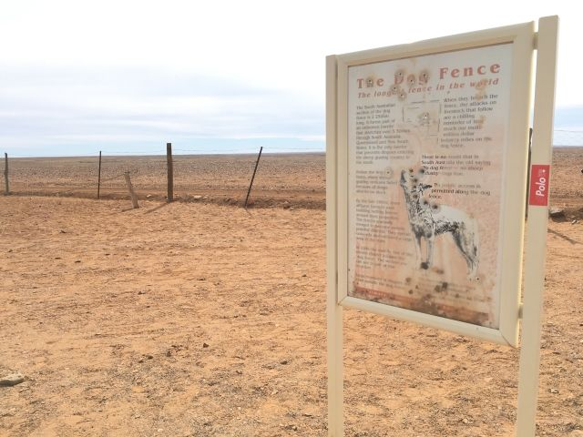 sign with bullet holes at the Dog Fence near Coober Pedy