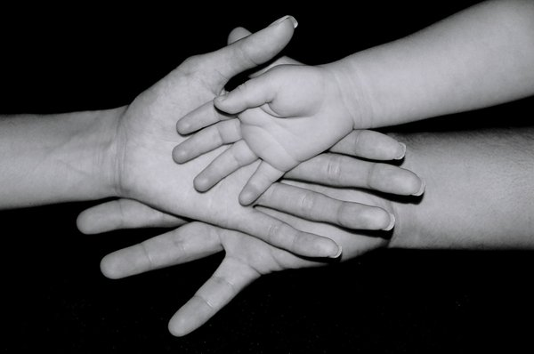 """Family Hands"" by melissafong"