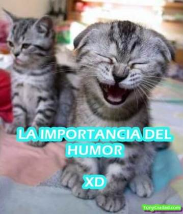 La importancia del Humor. Portada.