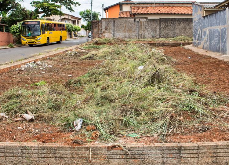 Secretaria de Meio Ambiente notifica proprietários de terrenos com mato alto e aplica multas