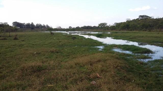 Prefeitura inicia obras no Parque Ecológico – Francisco Antunes Ribeiro – conhecido como 'Água da Porca'