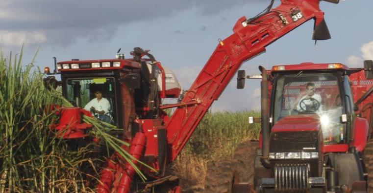 Especialista em segurança do trabalho orienta agricultores sobre comportamento no campo