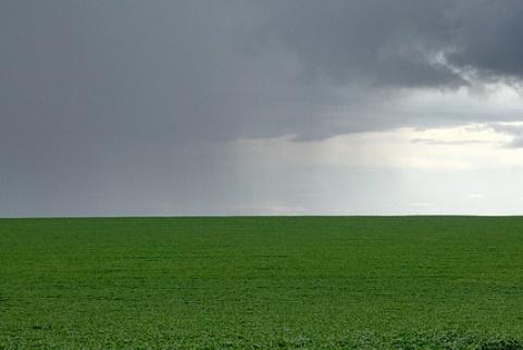 Agricultor avalia que atual volume de chuvas ajuda no desenvolvimento das lavouras da região
