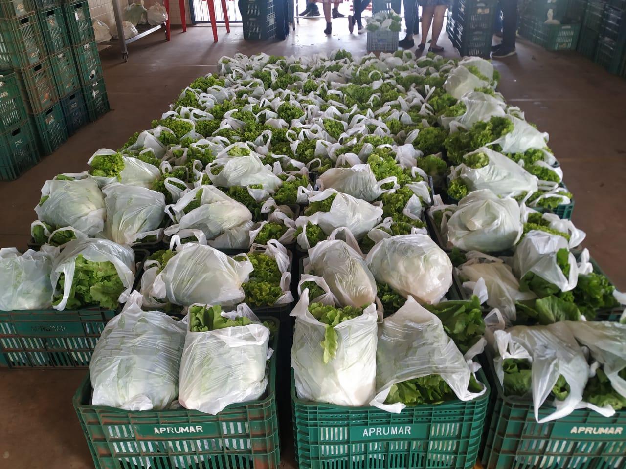 """Educação realiza entrega de alimentos aos alunos da EMEIF """"Prof.ª Coraly"""
