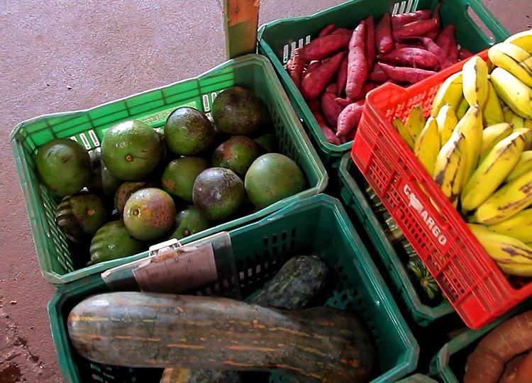 Prefeitura distribui kits de alimentos a alunos da Rede Municipal de Ensino