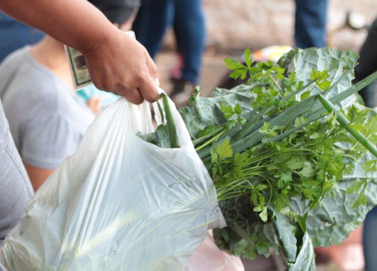 Alunos do da Rede Municipal já receberam mais de 43 mil quilos de alimentos
