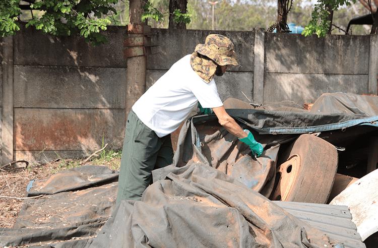 Em 30 dias Assis registra apenas 6 casos de Dengue
