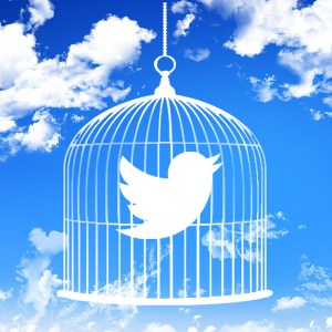 """""""Blue Sky Twitter"""""""