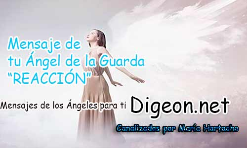 MENSAJE DE TU ÁNGEL DE LA GUARDA - REACCIÓN