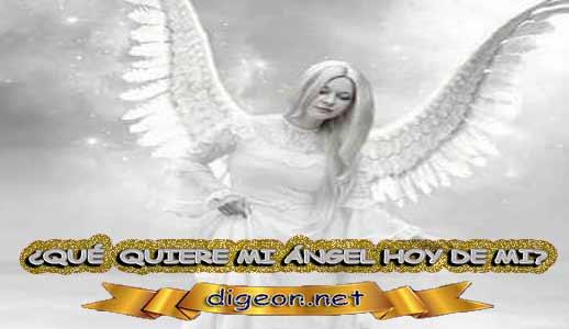 ¿QUÉ QUIERE MI ÁNGEL HOY DE MÍ? 23 de Agosto + DECRETO DIVINO + MENSAJES DE LOS ÁNGELES, enseñanza metafísica, mensajes angelicales, el consejo diario de los ángeles, con los Ángeles y sus mensajes, cada día un mensaje para ti