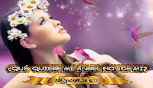 ¿QUÉ QUIERE MI ÁNGEL HOY DE MÍ? 28 de Agosto + DECRETO DIVINO + MENSAJES DE LOS ÁNGELES, enseñanza metafísica, mensajes angelicales, el consejo diario de los ángeles, con los Ángeles y sus mensajes, cada día un mensaje para ti, tarot de los ángeles, mensajes gratis de los ángeles, mensaje de tu ángel para hoy 28 de agosto, pronóstico de los ángeles hoy
