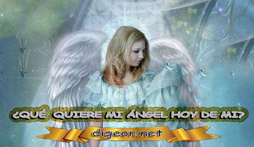 ¿QUÉ QUIERE MI ÁNGEL HOY DE MÍ? 06 de NOVIEMBRE + DECRETO DIVINO + MENSAJES DE LOS ÁNGELES, enseñanza metafísica, mensajes angelicales, el consejo diario de los ángeles, con los Ángeles y sus mensajes, cada día un mensaje para ti, tarot de los ángeles, mensajes gratis de los ángeles, mensaje de tu ángel para hoy 06 de noviembre, pronóstico de los ángeles hoy, reiki, palabra de dios hoy, evangelio del día, espiritualidad,lecturas del día, lecturas del día de hoy,evangelio del domingo,dios, evangelio de hoy, san juan de dios,jesucristo, jesus, inri, cristo, holistico, avatar