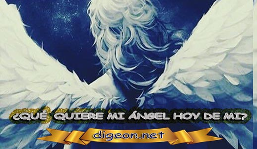 ¿QUÉ QUIERE MI ÁNGEL HOY DE MÍ? 17 de NOVIEMBRE + DECRETO DIVINO + MENSAJES DE LOS ÁNGELES, enseñanza metafísica, mensajes angelicales, el consejo diario de los ángeles, con los Ángeles y sus mensajes, cada día un mensaje para ti, tarot de los ángeles, mensajes gratis de los ángeles, mensaje de tu ángel para hoy 17 de noviembre, pronóstico de los ángeles hoy, reiki, palabra de dios hoy, evangelio del día, espiritualidad,lecturas del día, lecturas del día de hoy,evangelio del domingo,dios, evangelio de hoy, san juan de dios,jesucristo, jesus, inri, cristo, holistico, avatar