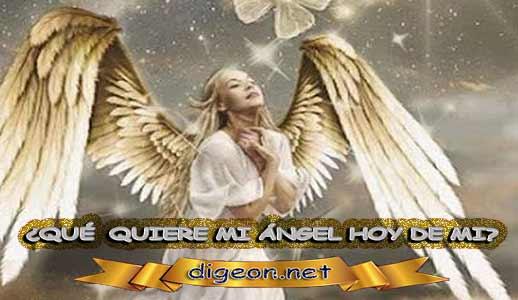 ¿QUÉ QUIERE MI ÁNGEL HOY DE MÍ? 06 de Abril + DECRETO DIVINO + evangelio del día de hoy 06 de Abril, MENSAJES DE LOS ÁNGELES, tu ángel, mensajes angelicales, el consejo diario de los ángeles, los Ángeles y sus mensajes, cada día un mensaje para ti, tarot de los ángeles, mensajes gratis de los ángeles, mensaje de tu ángel para hoy 06 de Abril, pronóstico de los ángeles hoy, reiki, palabra de dios hoy, evangelio del día, espiritualidad, lecturas del día, lecturas del día de hoy 06/04/2020, evangelio del domingo 06/04/2020, dios, evangelio de hoy 06/04/2020, san juan de dios, jesucristo, jesus, inri, cristo