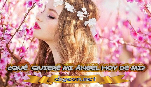 ¿QUÉ QUIERE MI ÁNGEL HOY DE MÍ? 28 de Mayo + DECRETO DIVINO + evangelio del día de 28 de Mayo, MENSAJES DE LOS ÁNGELES, tu ángel, mensajes angelicales, el consejo diario de los ángeles, los Ángeles y sus mensajes, cada día un mensaje para ti, tarot de los ángeles, mensajes gratis de los ángeles, mensaje de tu ángel para 28 de Mayo, pronóstico de los ángeles hoy, reiki, palabra de dios hoy, evangelio del día, espiritualidad, lecturas del día, lecturas del día de hoy 28 de Mayo, evangelio del domingo 28 de Mayo, dios, evangelio de hoy 28 de Mayo, san juan de dios, jesucristo, jesus, inri, cristo