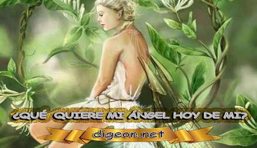¿QUÉ QUIERE MI ÁNGEL HOY DE MÍ? 29 de Mayo + DECRETO DIVINO + evangelio del día de 29 de Mayo, MENSAJES DE LOS ÁNGELES, tu ángel, mensajes angelicales, el consejo diario de los ángeles, los Ángeles y sus mensajes, cada día un mensaje para ti, tarot de los ángeles, mensajes gratis de los ángeles, mensaje de tu ángel para 29 de Mayo, pronóstico de los ángeles hoy, reiki, palabra de dios hoy, evangelio del día, espiritualidad, lecturas del día, lecturas del día de hoy 29 de Mayo, evangelio del domingo 29 de Mayo, dios, evangelio de hoy 29 de Mayo, san juan de dios, jesucristo, jesus, inri, cristo