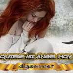 ¿QUÉ QUIERE MI ÁNGEL HOY DE MÍ? 26 de Febrero + DECRETO DIVINO + evangelio del día de hoy, MENSAJES DE LOS ÁNGELES, tu ángel, mensajes angelicales, el consejo diario de los ángeles, los Ángeles y sus mensajes, cada día un mensaje para ti, tarot de los ángeles, mensajes gratis de los ángeles, mensaje de tu ángel para hoy , pronóstico de los ángeles hoy, reiki, palabra de dios hoy, evangelio del día, espiritualidad, lecturas del día, lecturas del día de hoy , evangelio del domingo, dios, evangelio de hoy, san juan de dios, Jesucristo, Jesús, inri, cristo, los arcángeles, mensaje de los ángeles, mensaje angelical, mensajes de angeles diarios, mensajes de los angeles numerología ¿Cómo puedo hablar con mi ángel? ¿Cómo saber que los ángeles te hablan? ¿Cómo se llaman las personas que hablan con los ángeles? ¿Cómo sentir a tu ángel guardián?
