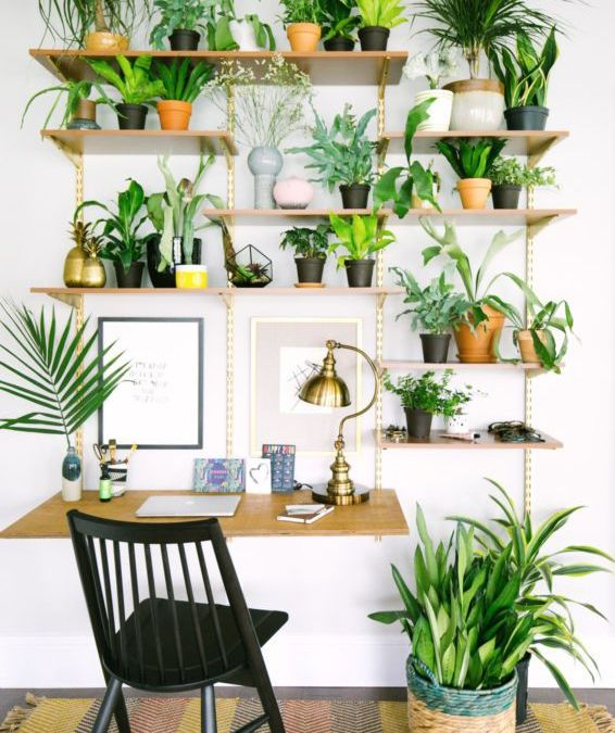 How To Bring More Green To Your Boring Workspace
