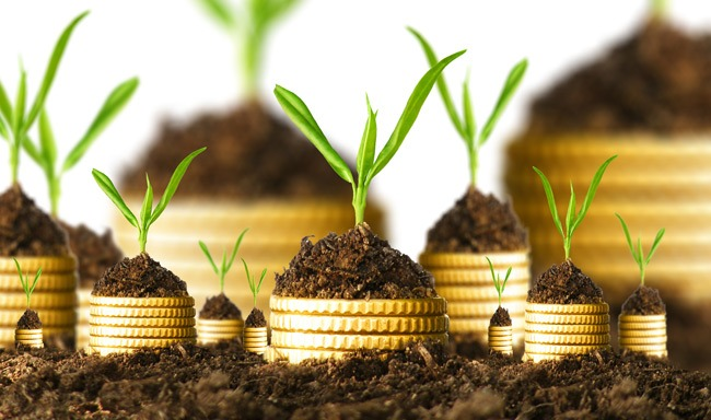 How To Find Investors In India For Your Next Big Fund Raise