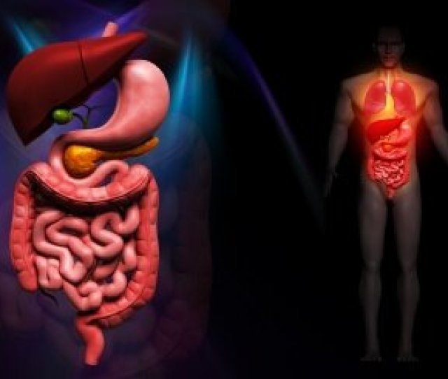 What Really Causes Acid Reflux And Gerd