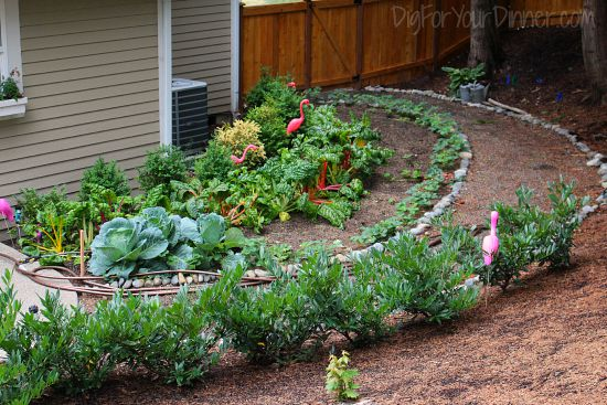 shaded vegetable garden